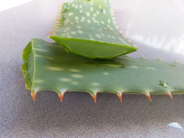easy ways to use Aloe Vera