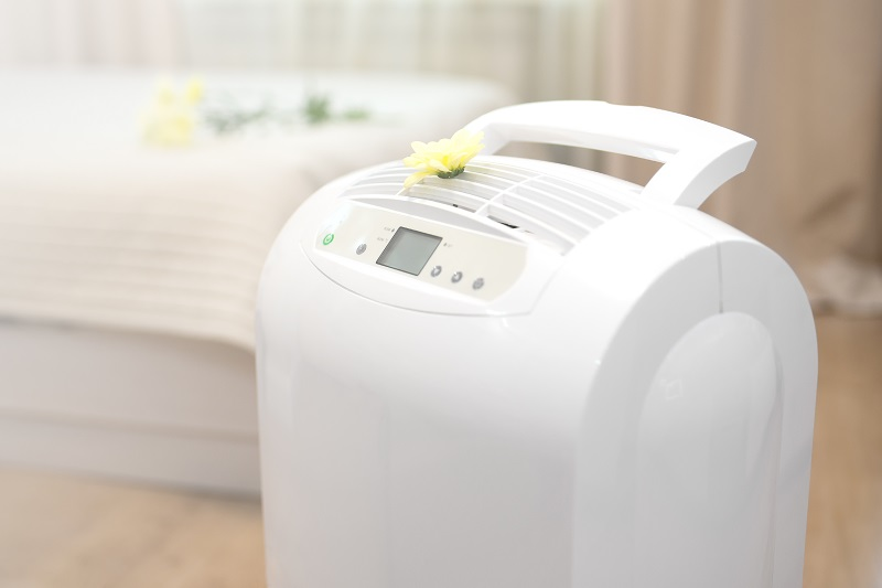 Home Air Purifier,climate device for home
