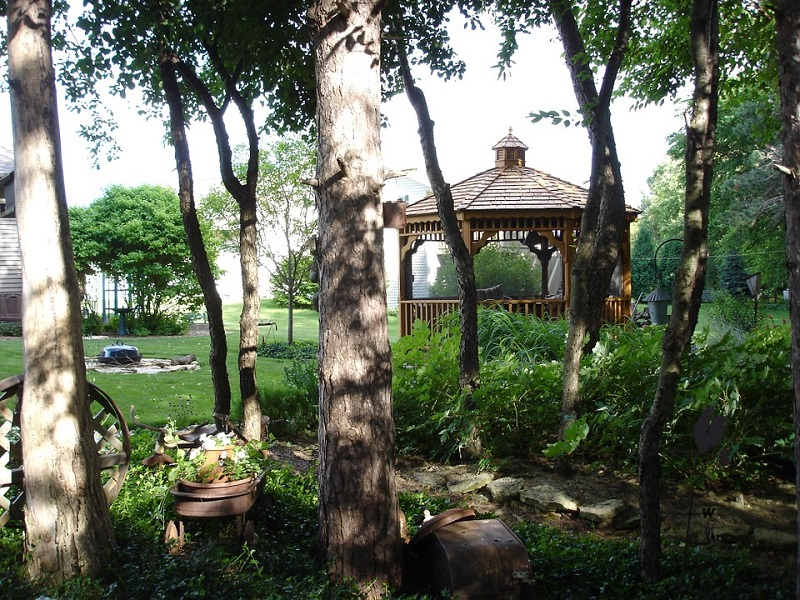 trees in yard with gazebo