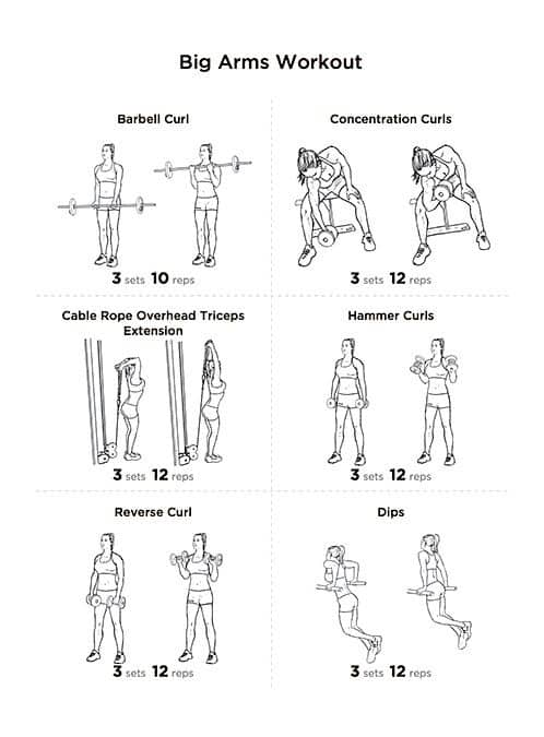 bigger biceps workout routine