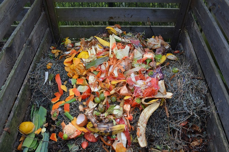 compost easy ways to dispose garbage at home