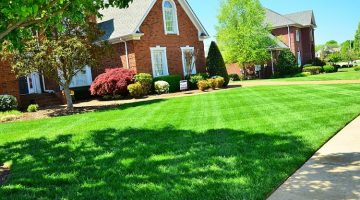 13 Easy Ways To Get A Beautiful Healthy Lawn With Thicker Greener Grass
