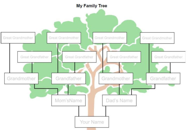 7 easy ways to make a family tree ccuart Images