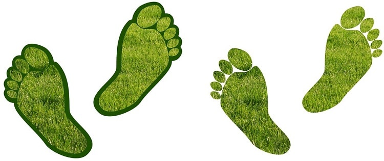 easy ways to reduce carbon footprint