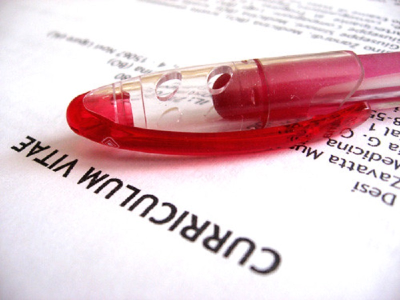 a red ball pen on a curriculum vitae