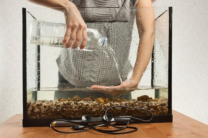 hands of aquarist pouring water in aquarium from a bottle