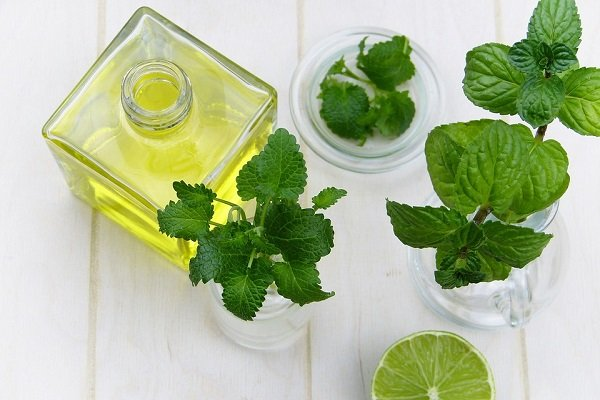 how to use peppermint oil to get rid of mice