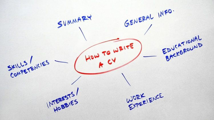 CV features what should a CV include