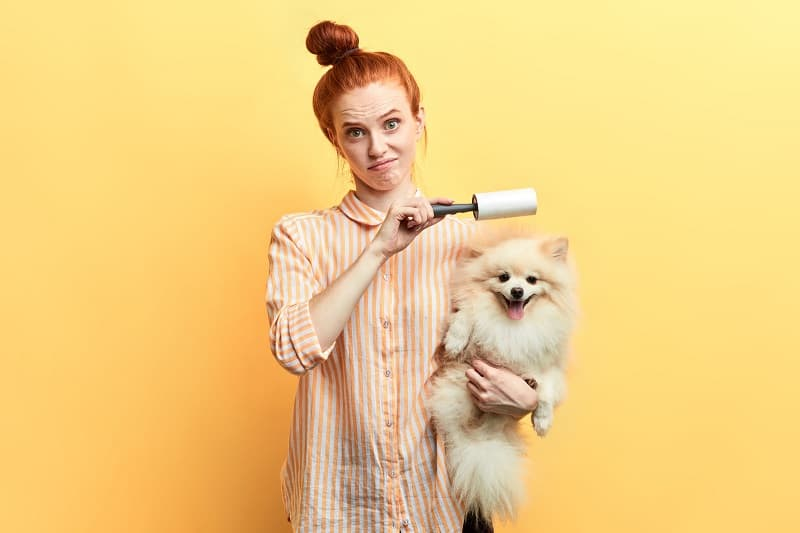 lint remover girl with her pet dog