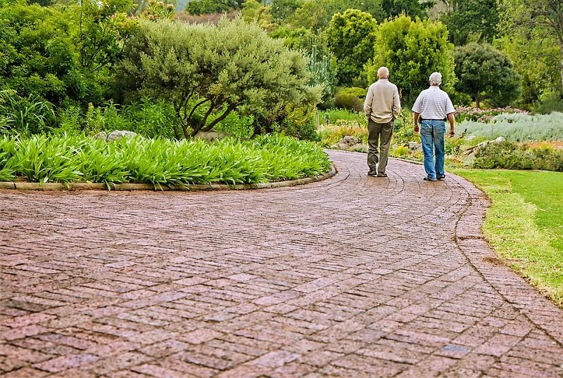 elderly men walking in garden