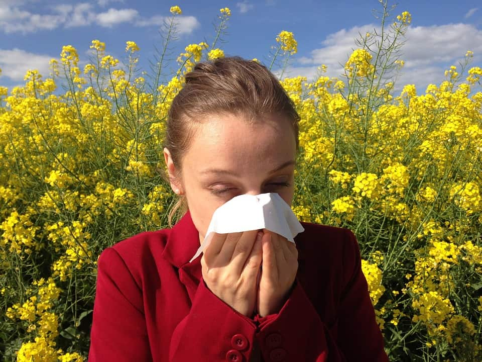 ways to combat allergy