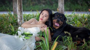 15 Easy Ways to Include Your Pets In Your Wedding
