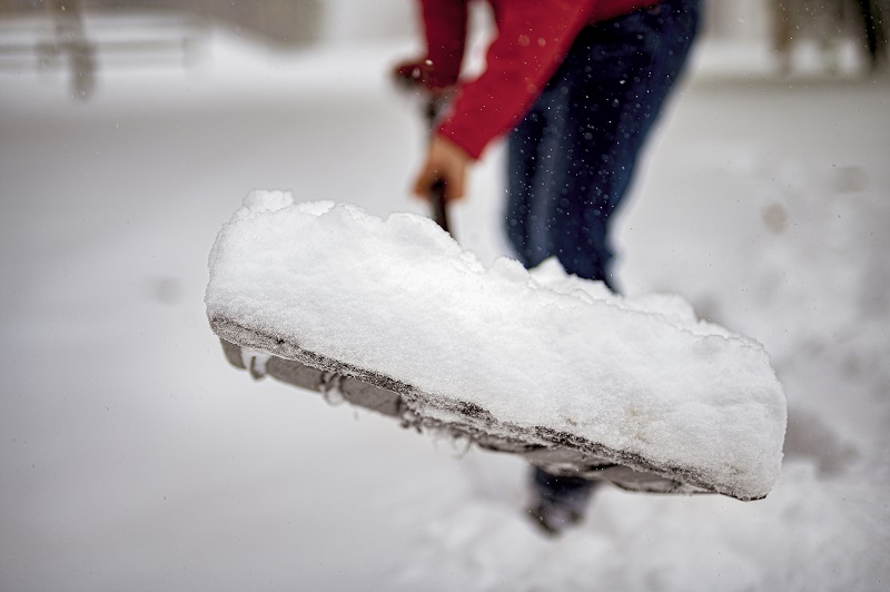 snow shovel filled with snow