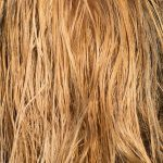 10 Easy Ways to Prevent and Remove Split Ends
